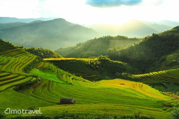rizieres en terasses à sapa