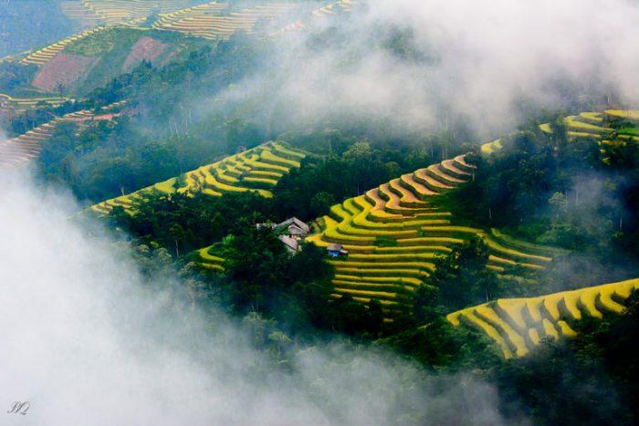 rizieres en terasses à ha giang