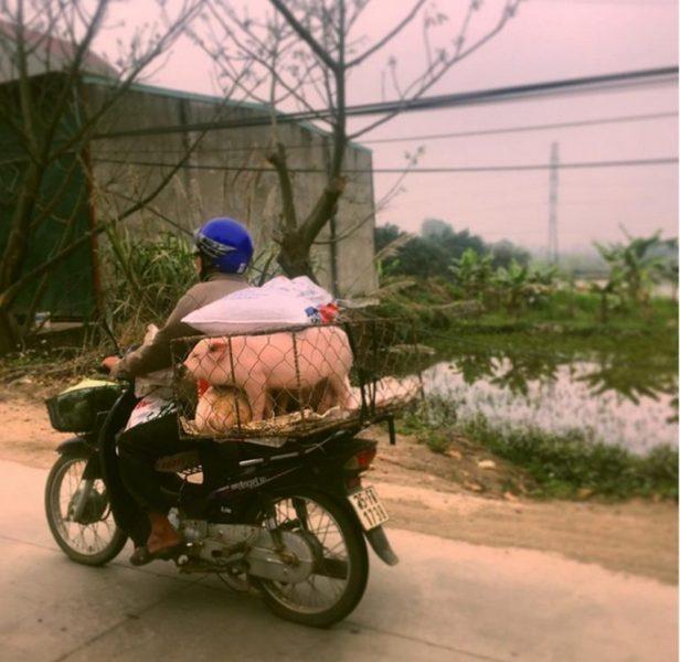 traverser la rue au vietnam
