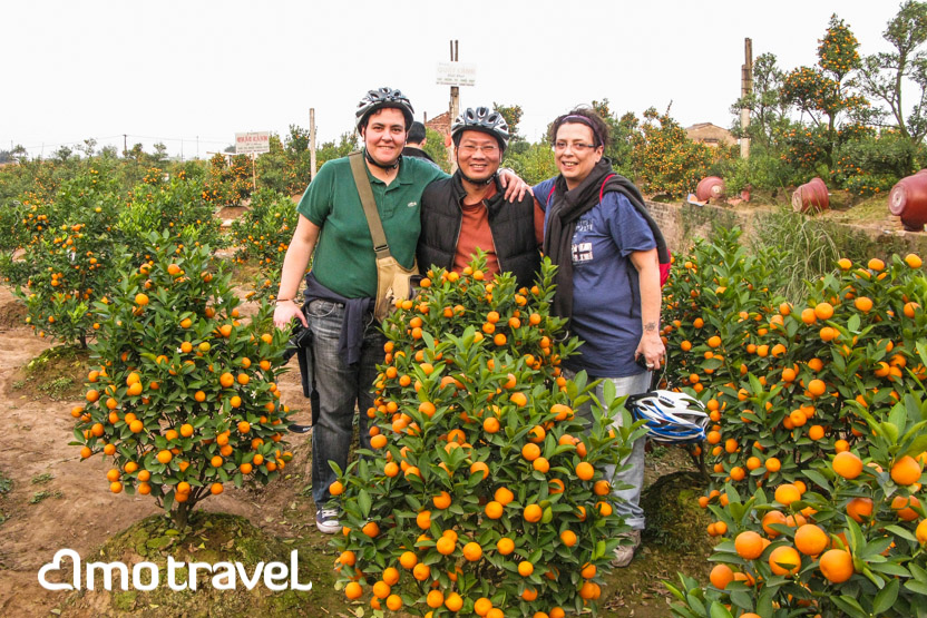 tour laos vietnam kumquat