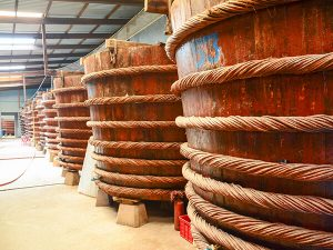 Dentro una fabbrica di salsa di pesce a Phu Quoc (Foto: Internet)