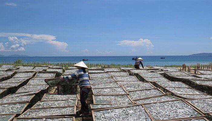 Villaggio di Ganh Dau - uno dei villaggi di pescatori più belli