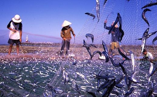 Villaggio di pescatori Ham Ninh