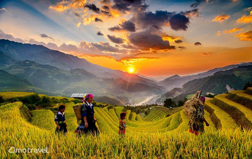 Terrazze del riso a Mu Cang Chai Vietnam - Foto Minh Huyen