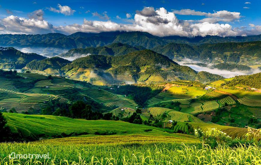 Terrazze del riso a Mu Cang Chai Vietnam