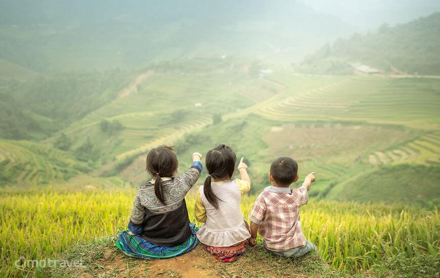 Il meraviglioso spettacolo delle terrazze di riso del Sapa Vietnam